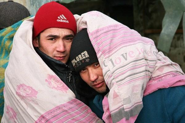 Что везут с собой мигранты? ВИЧ, сифилис, туберкулез Россия, Мигранты, Заболевания, ВИЧ, Спутник и погром, Преступление, Политика