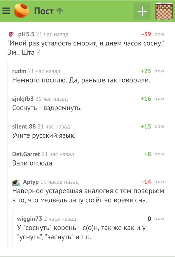 Есть же всё-таки грамотные люди на Пикабу Грамотность, Великий могучий, Русский язык