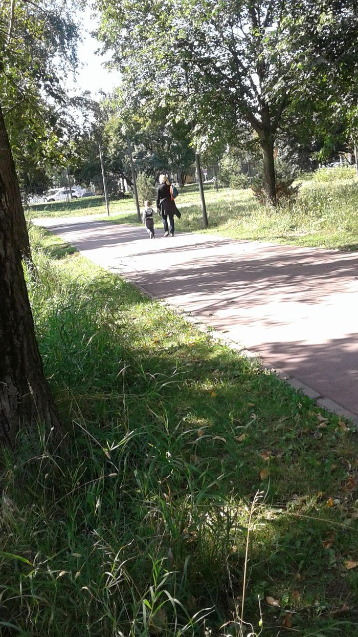 Надоели, мошенники в парке. Отдых и безопасность, Мошенники вокруг нас, Длиннопост