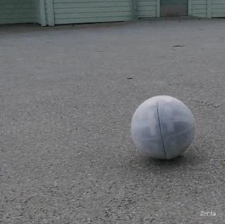 Роботизированный шар