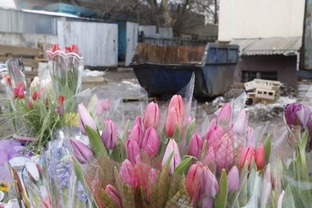 Челябинск закупка цветов для магазина в минске букеты бувардия фото