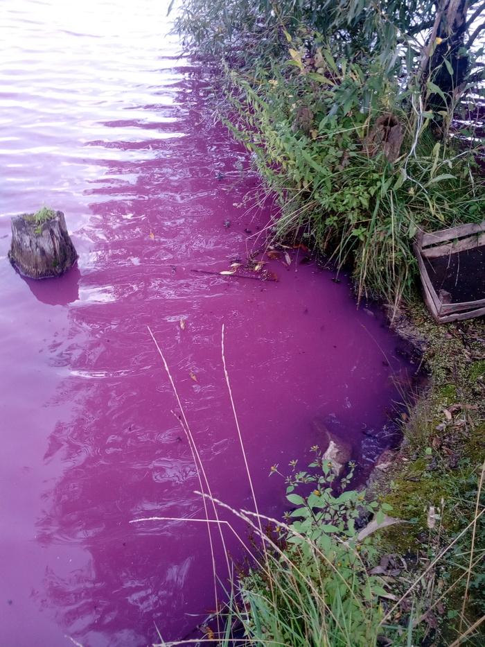 Берегите природу, мать вашу! Загрязнение окружающей среды, Природа, Рыбалка, Длиннопост