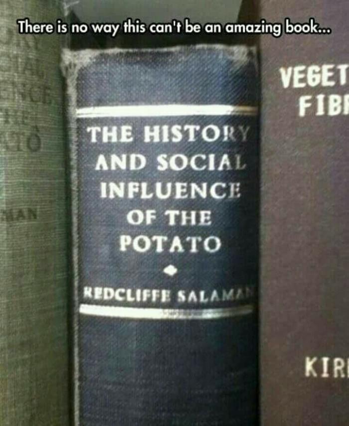 «История и влияние на общество картофеля» - настольная книга Лукашенко.
