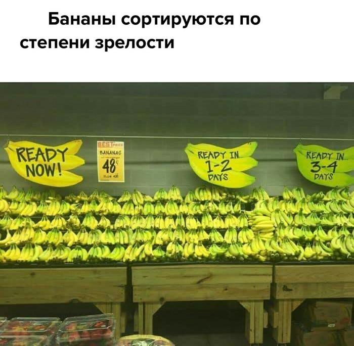 Сортировка бананов по степени зрелости