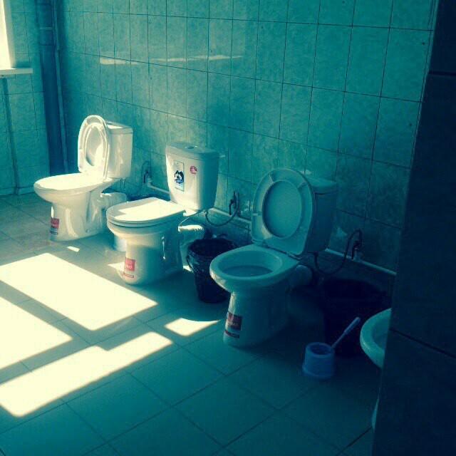 Туалет в образовательном учреждении Туалет, Стеснение, Комплексы, Ремонт