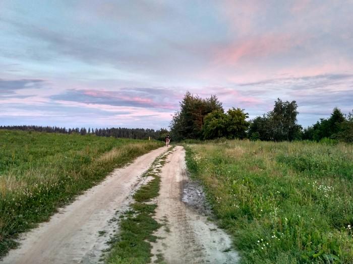 Красота в мелочах [7] Природа, Беларусь, Закат, Красота природы, Длиннопост