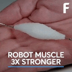 Синтетический мускул для робота.