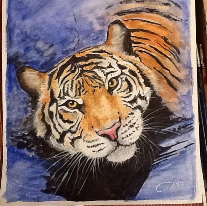 Тигра. акварель