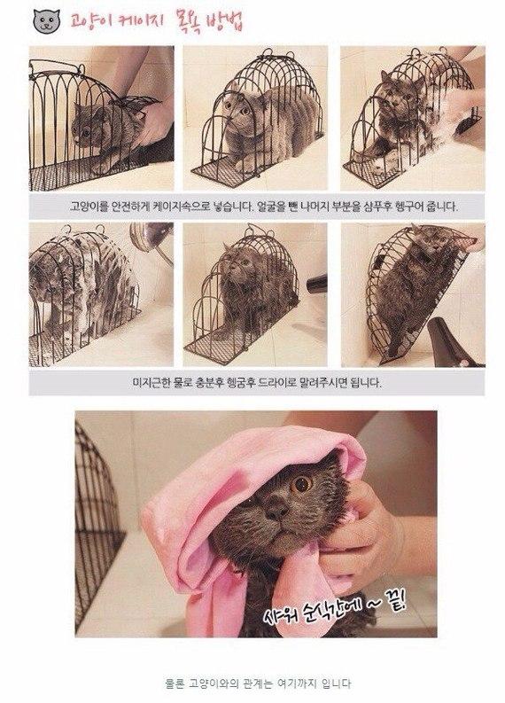 Приспособление для мытья буйного котейки
