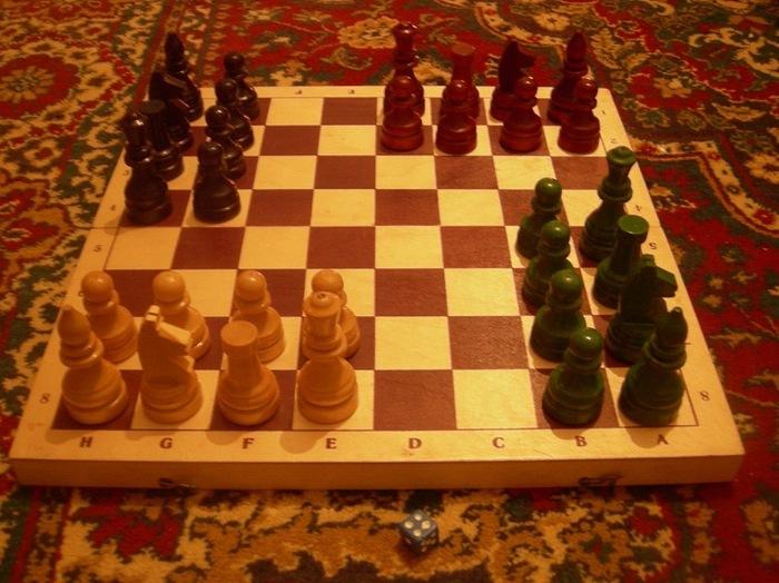 Шахматист брал кота на игру