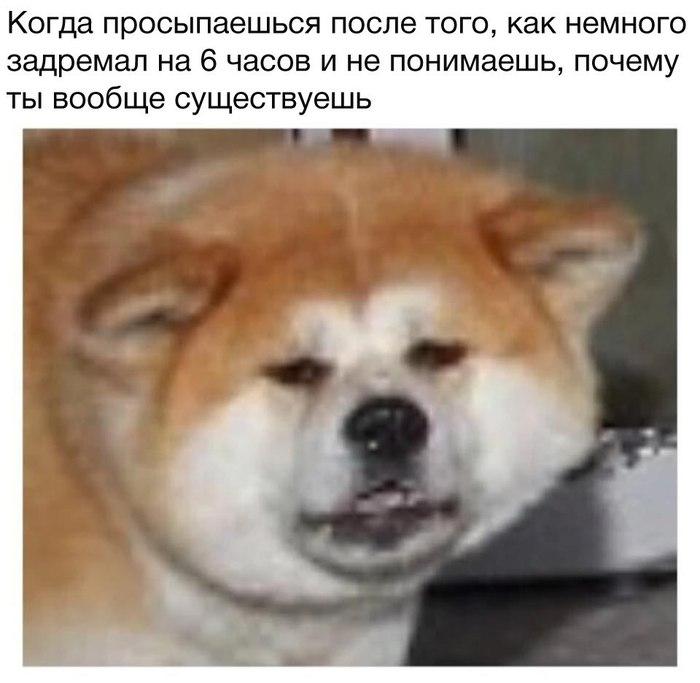 Жиза Не мое, Минимумдватэга