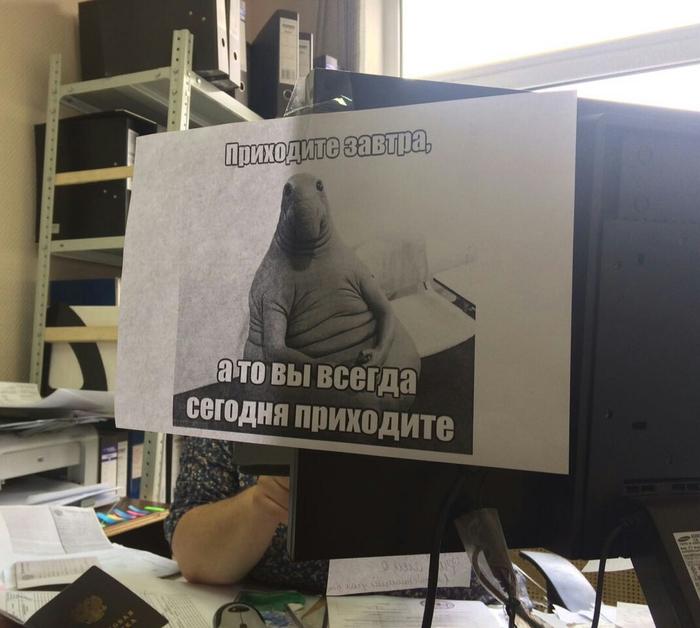 Приходите завтра)