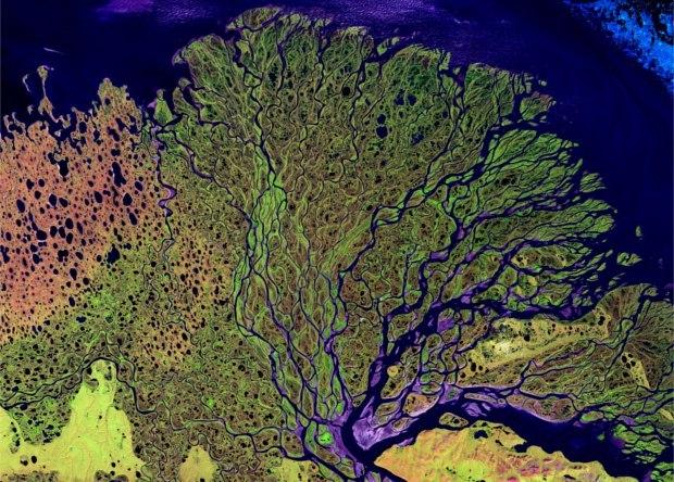 Математики объяснили структуру речных дельт Наука, Новости, Математика, Геология, Дельты рек
