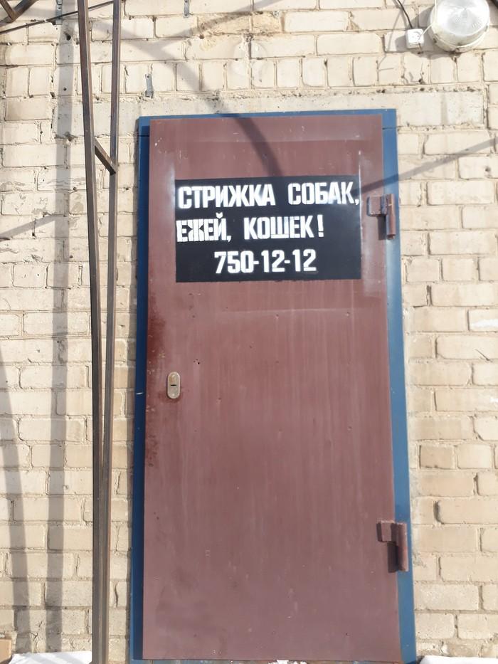 Суровый Челябинск Моё, Челябинск, Прогулка