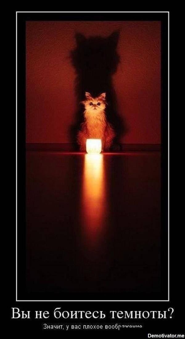 Про Кота и темноту. Кот, Темнота, Пожар, Детские шалости, Шок, Длиннопост
