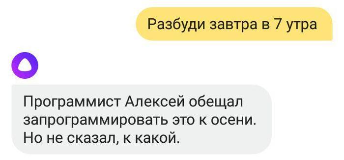 Программист Алексей, нам открыли твою тайну. Алиса, Яндекс, Программист