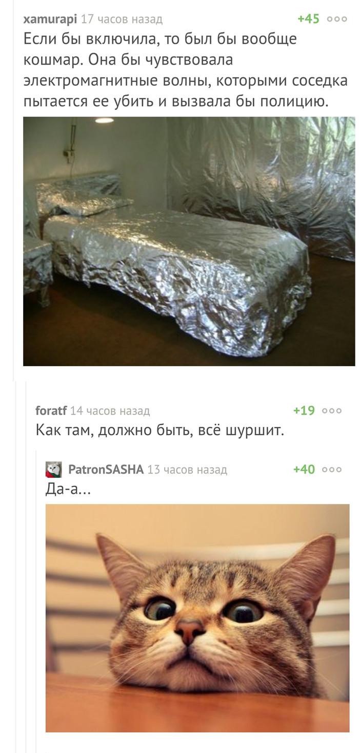 Просто котина мечта Мечта, Фольга, Кот, Доброта, Комментарии