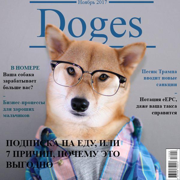 Опрос для владельцев собак! Опрос, Собака, Doges