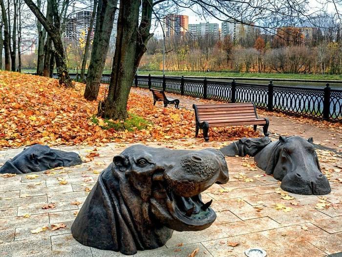 Бегемоты на набережной в старых Химках