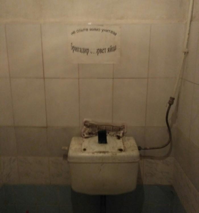 Правильная поддержка чистоты Чистота, Бригадир, Туалет, Серпом по яйцам