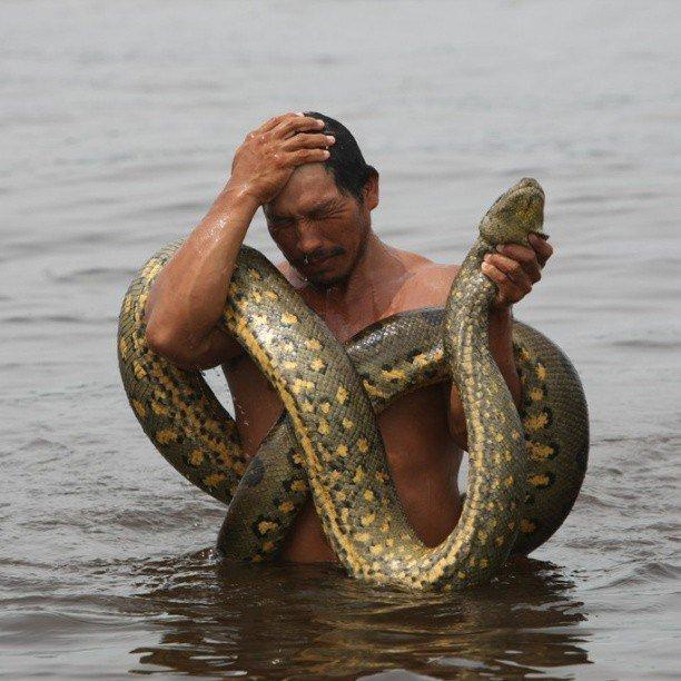 Он засунул змею мне в пизду