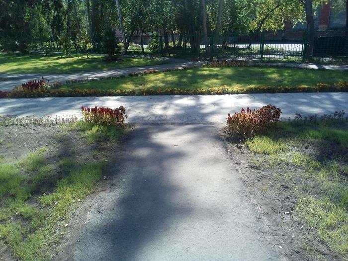 Свинство в городе. омск, парк, благоустройство, через жопу, длиннопост