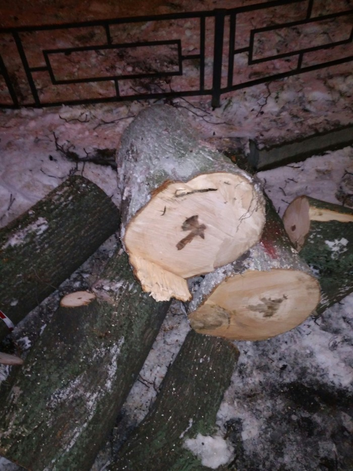 Орудие убийства на срубленном дереве) Дерево, Рисунок, Природа, Длиннопост, Топор