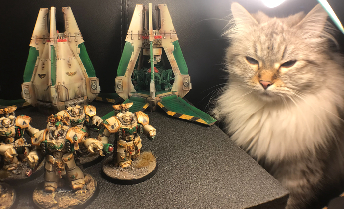 Warhammer 40000: Ангелы Безмятежности 01 (начало) Games Workshop, Warhammer 40k, Angelsofserenity, Коллекция, WH Miniatures, Длиннопост