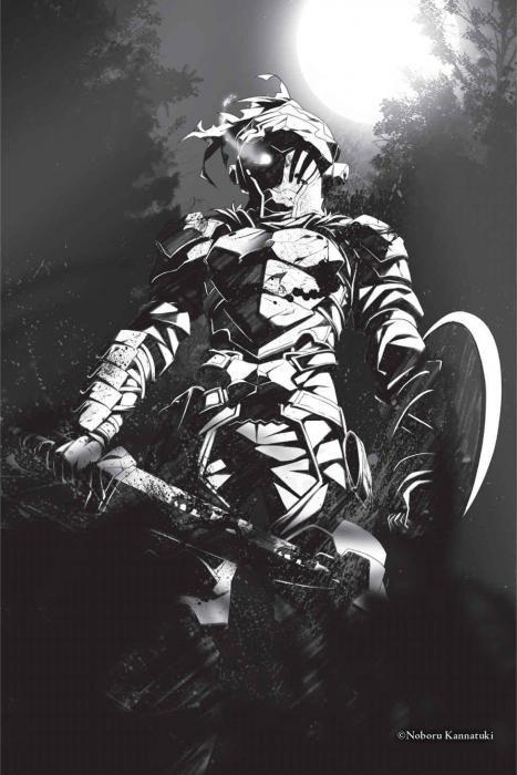 Убийца Гоблинов Книги, Что почитать?, Обзор книг, Литература, Ранобэ, Фэнтези, Длиннопост, Goblin Slayer