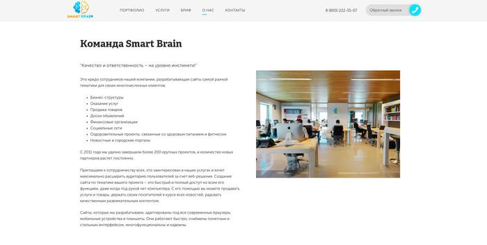 Smart Brain или почему не стоит доверять всему что пишут на сайтах. Мошенники, Веб-Разработка, Обман, Продвижение сайтов, Расследование, Длиннопост
