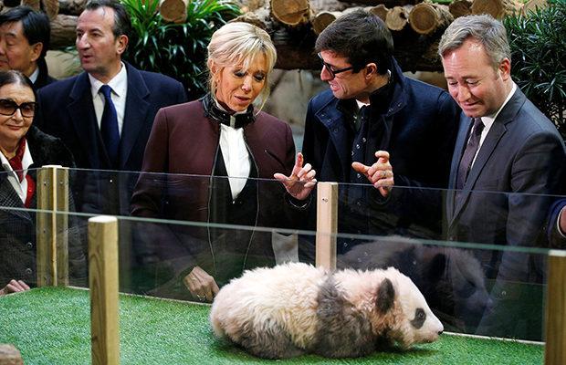 Чудесный крестник Панда, Парижский зоопарк, Первые лица государства, Ближе к народу, Животные, Забота, Китай, Крестная мама, Длиннопост