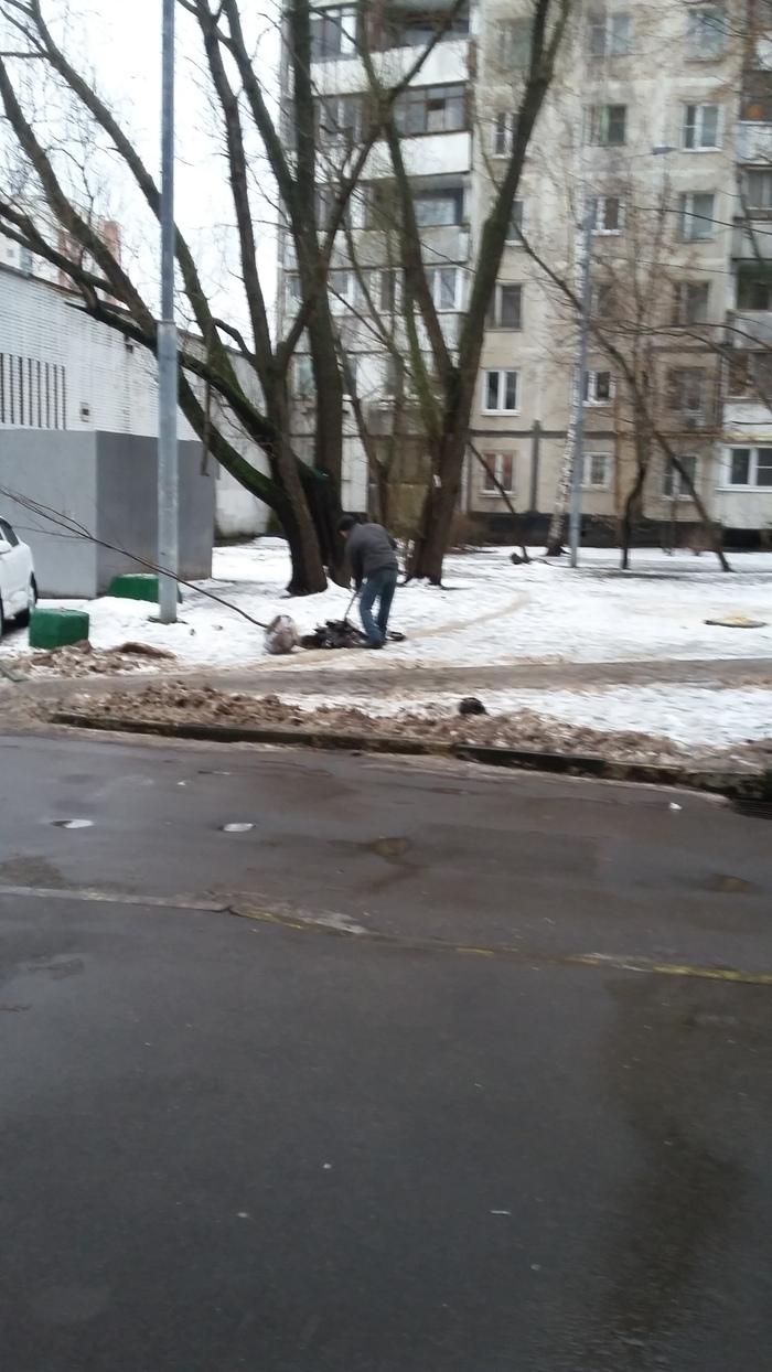 В Москве весна Весна, Озеленение, Коммунальщики