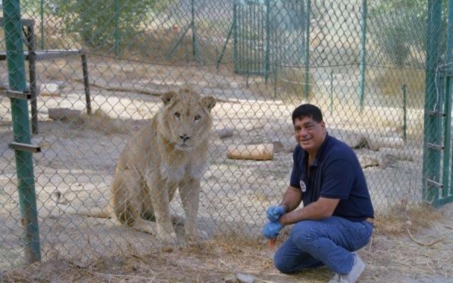 Человек, рискующий жизнью ради животных спасение животных, герои, война, благотворительность, дикие животные, длиннопост