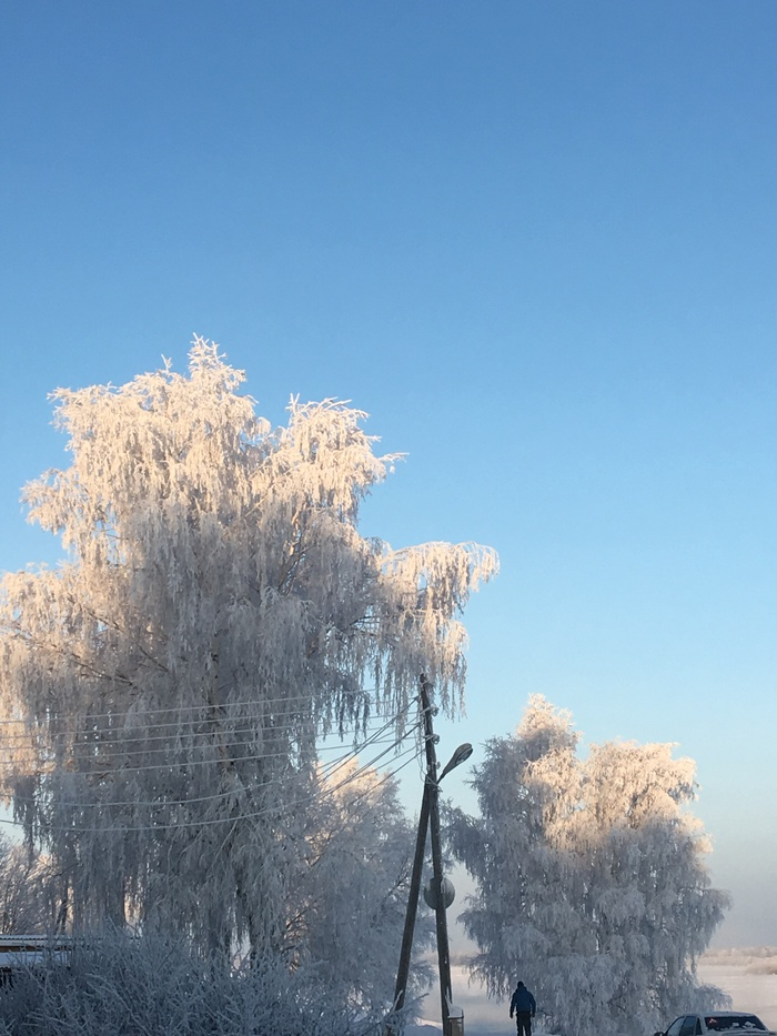 Морозный день! Мороз, Деревья в снегу, Красота природы, Длиннопост