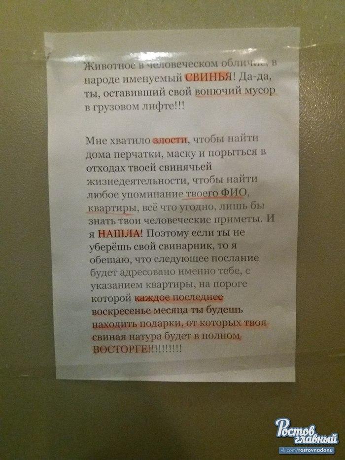 Борьба со свиньями по-Ростовски Ростов-на-Дону, соседи, длиннопост