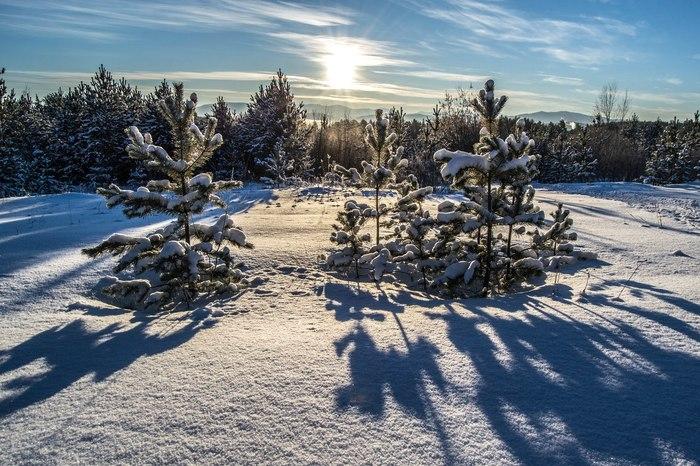 Окрестности города Юрюзань. Юрюзань, Природа, Зима, Фотография, Длиннопост