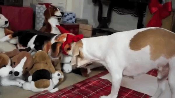 О нет, игрушки ожили! А, это ты.