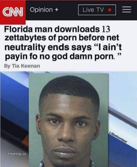 Запасливый Флорида, США, Сетевой нейтралитет, Порно