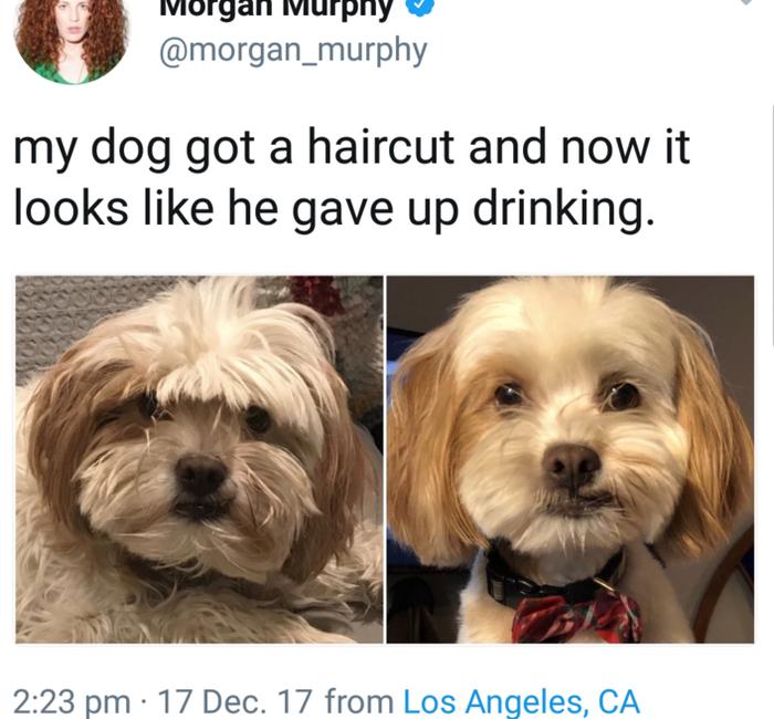 Когда бросил пить.