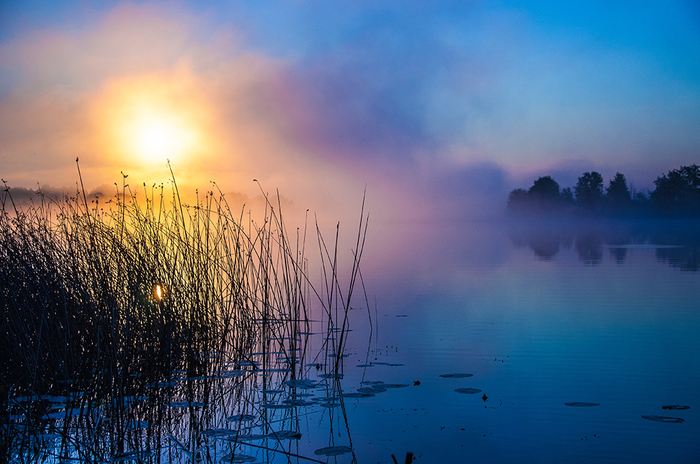 Рассвет на озере Фотография, Скоро лето, Туман, Озеро, Рассвет