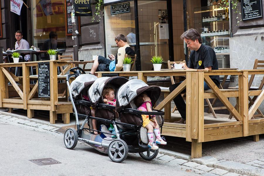 Интересные, уникальные и практически не известные факты о Швеции.
