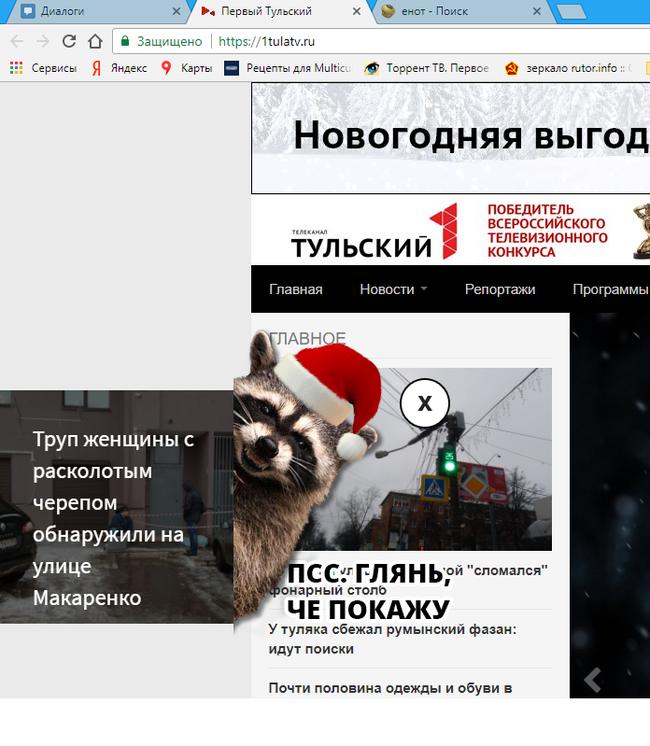 Милый новогодний енот Енот, Новости, Тула, Косяк
