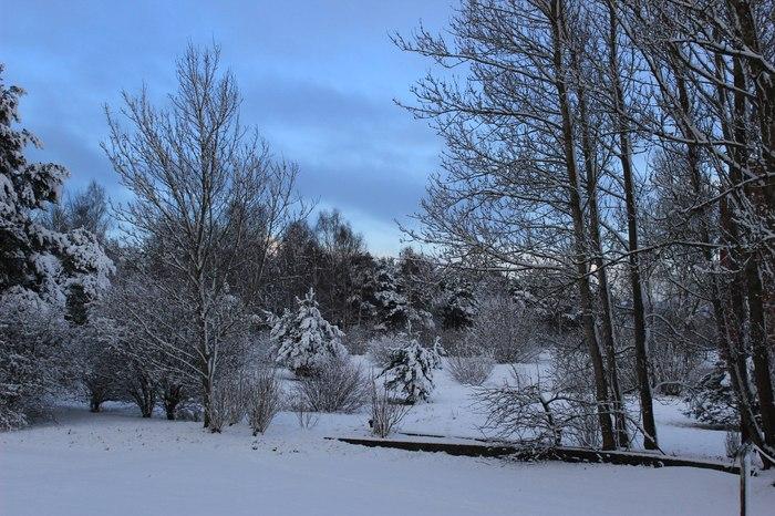 Лето-зима, вид из окна... Иней, Зима, Снег, Красивое