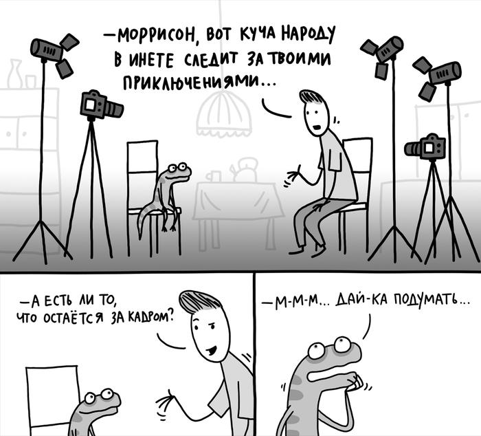 Шлюху на час Большая линия досуг и индивидуалки в Санкт-Петербурге