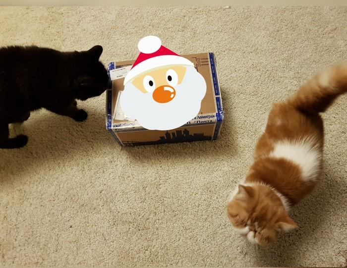 Мой подарок из Питера! Обмен подарками, Тайный Санта, Длиннопост