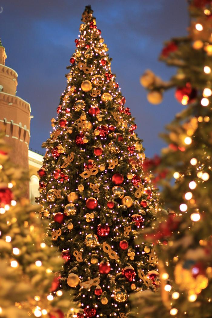 Москва, Охотный Ряд Москва, Предпраздничное настроение, Canon 600D, Охотный ряд, Зима, Новый Год, Моё, Безобработки, Длиннопост
