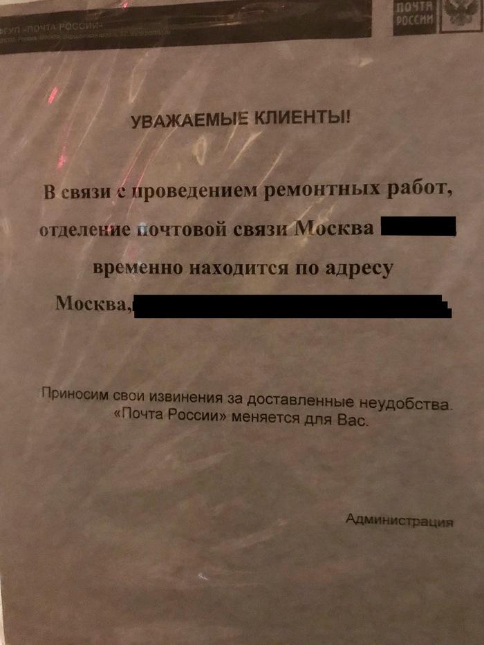Подарок от моей Тайной Снегурочки из Минска Обмен подарками, Новый Год, Кот, Тайный Санта, Длиннопост