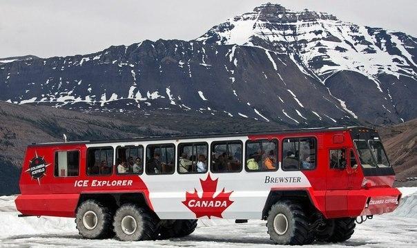 Автобусы (часть 3). Суровый канадский Иван Автобус, Автопром, Канада, Редкий автобус, Техника, Длиннопост