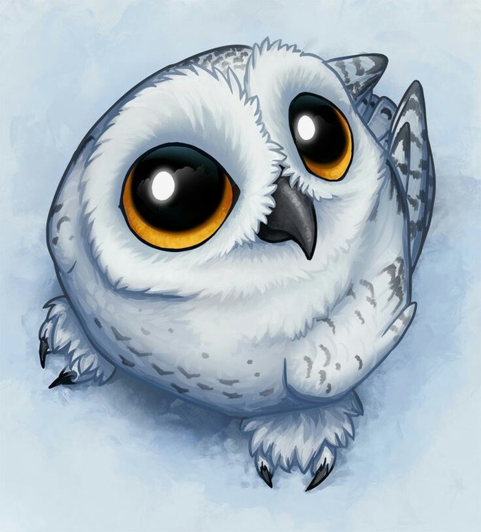 cute owl drawings - 736×815