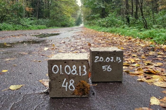Бетонные кубики в лесу Лес, Загадка, Находка, Лосиный остров